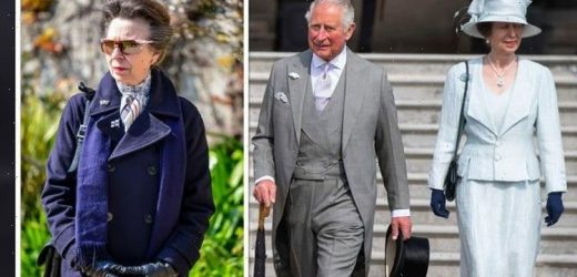 'Strong contrasts': Princess Anne and Prince Charles 'very different' from one another