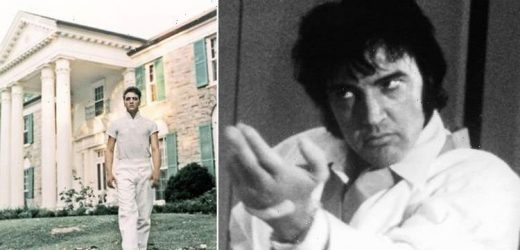 Elvis Presley's Graceland mark anniversary with tribute to The King's love of karate