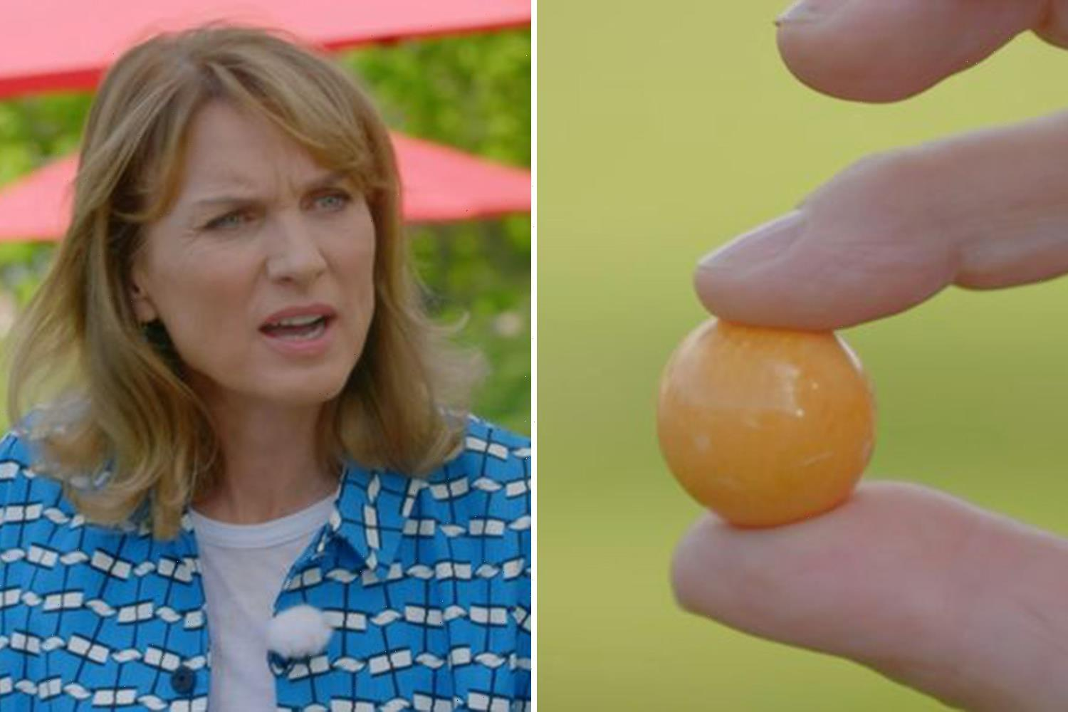 """Fiona Bruce is left speechless at the HUGE price tag for a """"gobstopper"""" on Antiques Roadshow"""