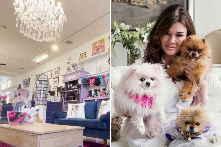 Inside Lisa Vanderpump's luxury dog rescue shelter featuring velvet couches, crystal chandeliers and grooming salon