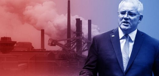 Voters want Australia to set a net zero 2050 emissions target, but no carbon tax