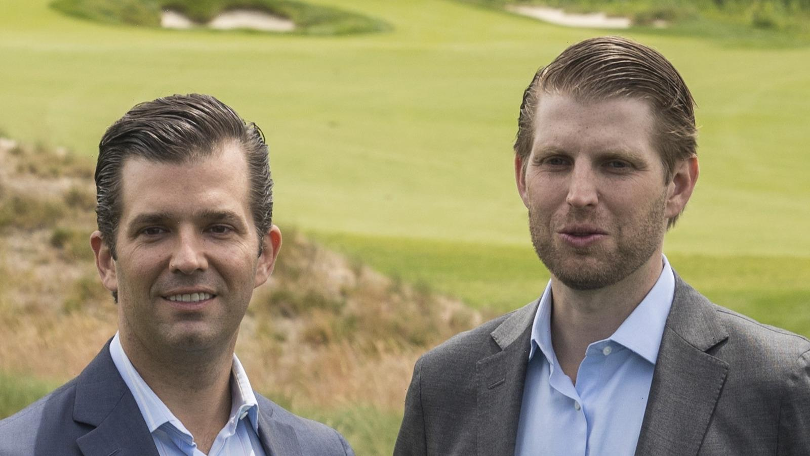 Don Jr. And Eric Trumps Reaction To The Indictment Has Twitter In A Tizzy