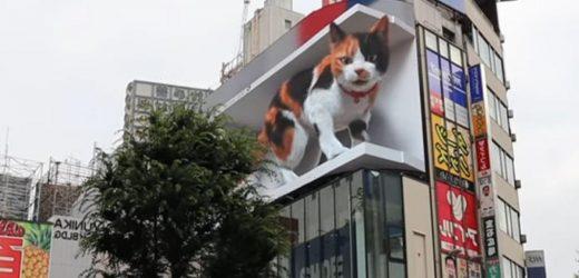 Giant 1,600ft Cat Playfully Terrorizes Tokyo