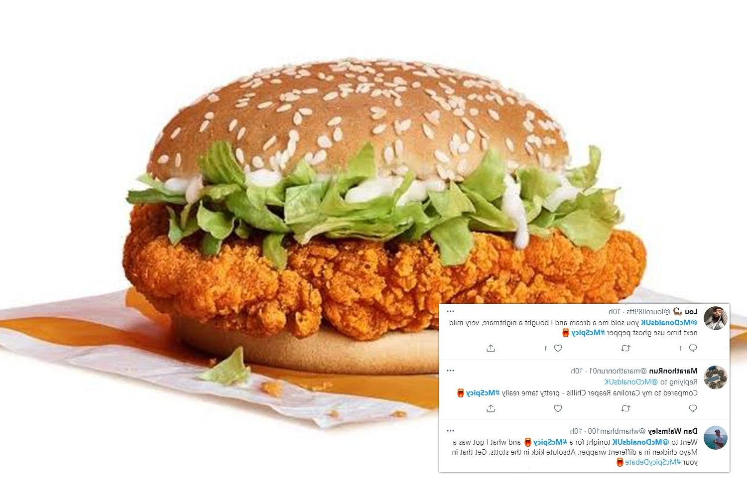 McDonald's fans slam the McSpicy burger for its 'underwhelming' and 'mild' flavour