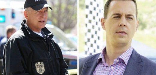 NCIS plot hole: Timothy McGee knew Gibbs killed key suspect in new theory