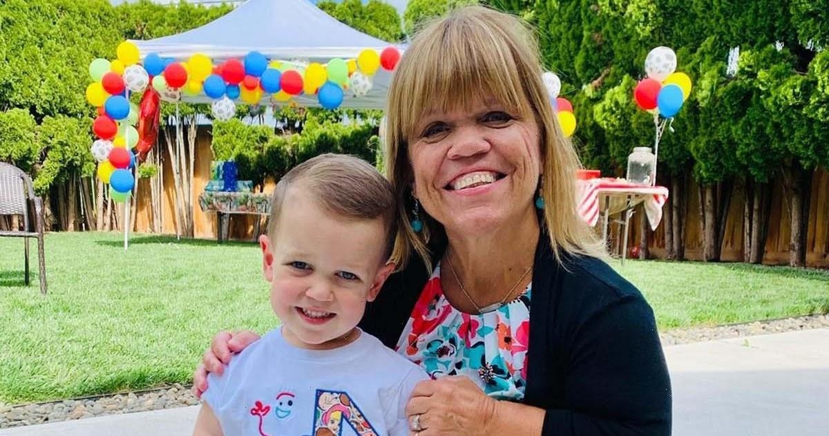 Watch Amy Roloff Ask Grandson Jackson, 4, to Be Her Ring Bearer
