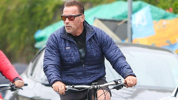 Arnold Schwarzenegger, 74, Is In The Best Shape Of His Life Riding A Bike In L.A.  Photos