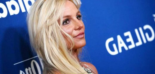 Britney Spears dogs taken away from her before battery incident