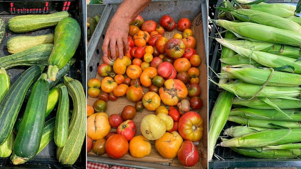Corn, Zucchini, Tomatoes: Making the most of summer's bounty
