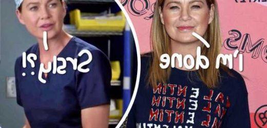 Ellen Pompeo Has 'No Desire' To Keep Acting After Grey's Anatomy Ends!