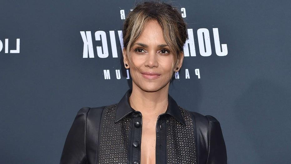 Halle Berry sued by UFC fighter who claims she was promised a role in her movie 'Bruised': report