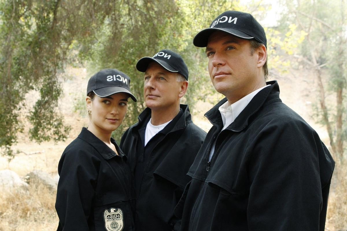 Michael Weatherly Had a Pretty Successful Career Before 'NCIS'