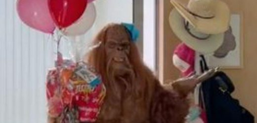 Mums birthday party goes epically wrong when Bigfoot with tutu shows up