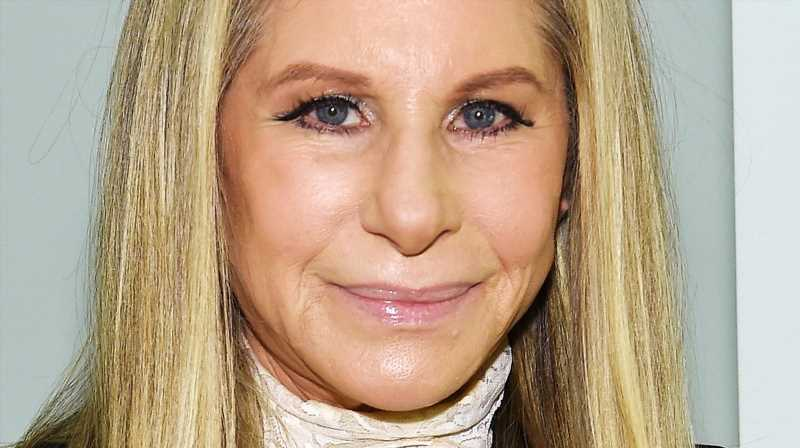The Truth About Barbra Streisand And Donald Trump