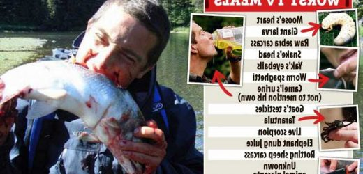 Bear Grylls says none of his friends will dine at his house after watching him eat vile food on TV