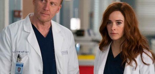 Grey's Anatomy Vet Abigail Spencer Returning as Megan in Season 18