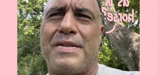 Joe Rogan Cancels Show After Getting COVID, Admits Using Animal Anti-Parasitic Drug