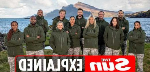 Who are the Celebrity SAS: Who Dares Wins finalists?